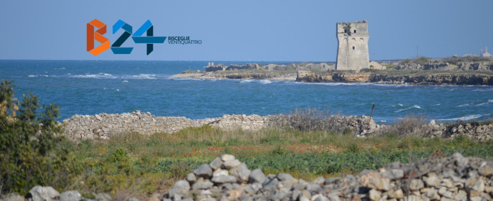 """Condotta sottomarina, i Cittadini a 5 Stelle ribadiscono il loro no: """"Promettiamo battaglia"""""""