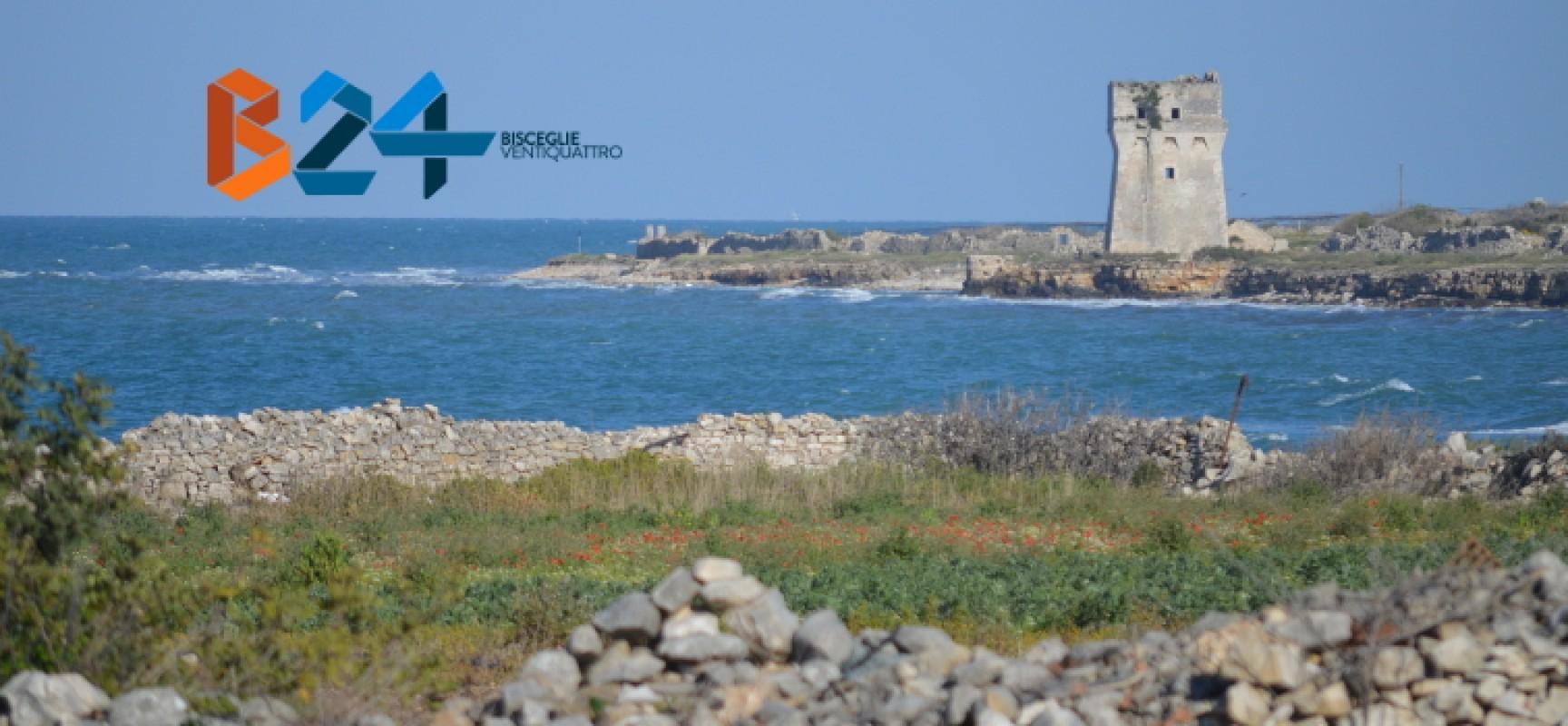 """Torre Calderina, il M5s si esprime sul progetto: """"Si seppellirà l'area con i liquami"""""""