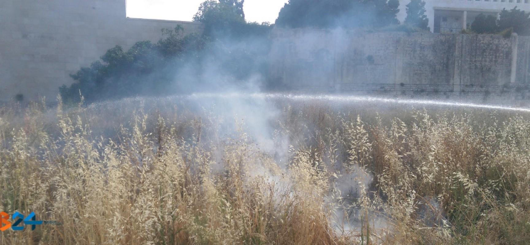Principio di incendio subito sedato a Conca dei Monaci, intervento dei Vigili del Fuoco di Molfetta
