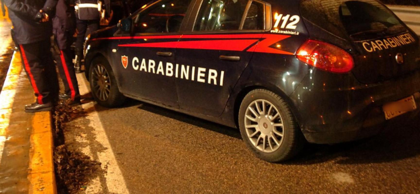 """In quattro tentano di rubare il carico di un tir, Carabinieri arrestano 18enne bitontino nell'area di servizio """"Dolmen"""""""