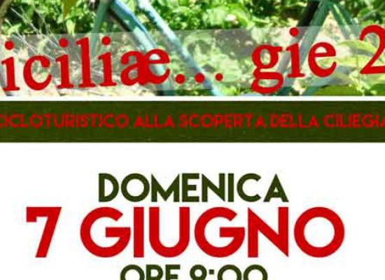 """Domani al via l'edizione 2015 di """"Biciliae…gie"""""""