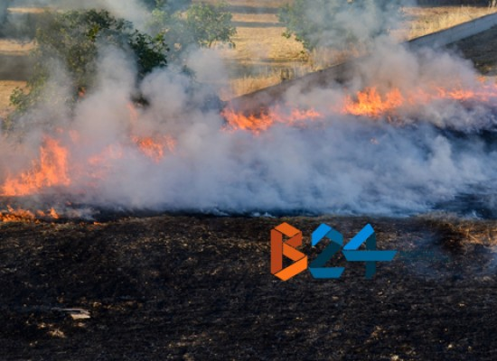 Incendio in un terreno privato nel quartiere Sant'Andrea / FOTO