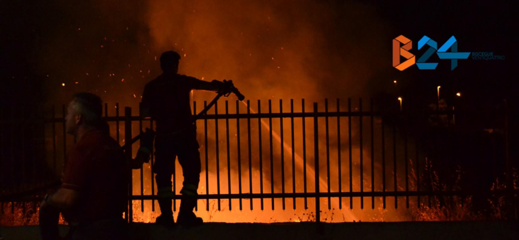 Ancora fiamme nella serata di ieri a Sant'Andrea: altri due roghi appiccati / FOTO