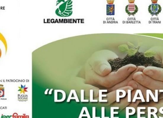 """""""Dalle piante alle persone"""", conferenza stampa in Provincia su progetto recupero aree degradate"""