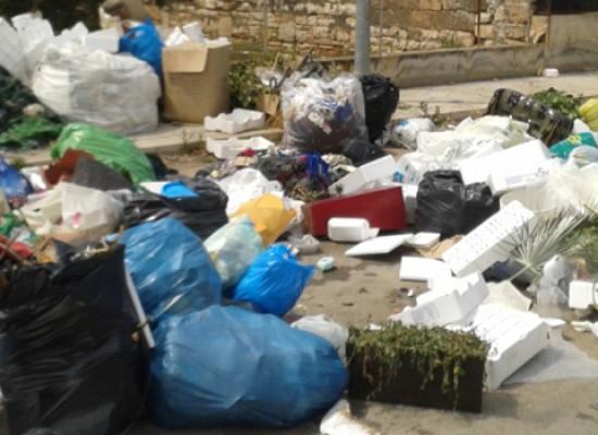 Carrara Finizia invasa da pattume, la segnalazione di un lettore / FOTO