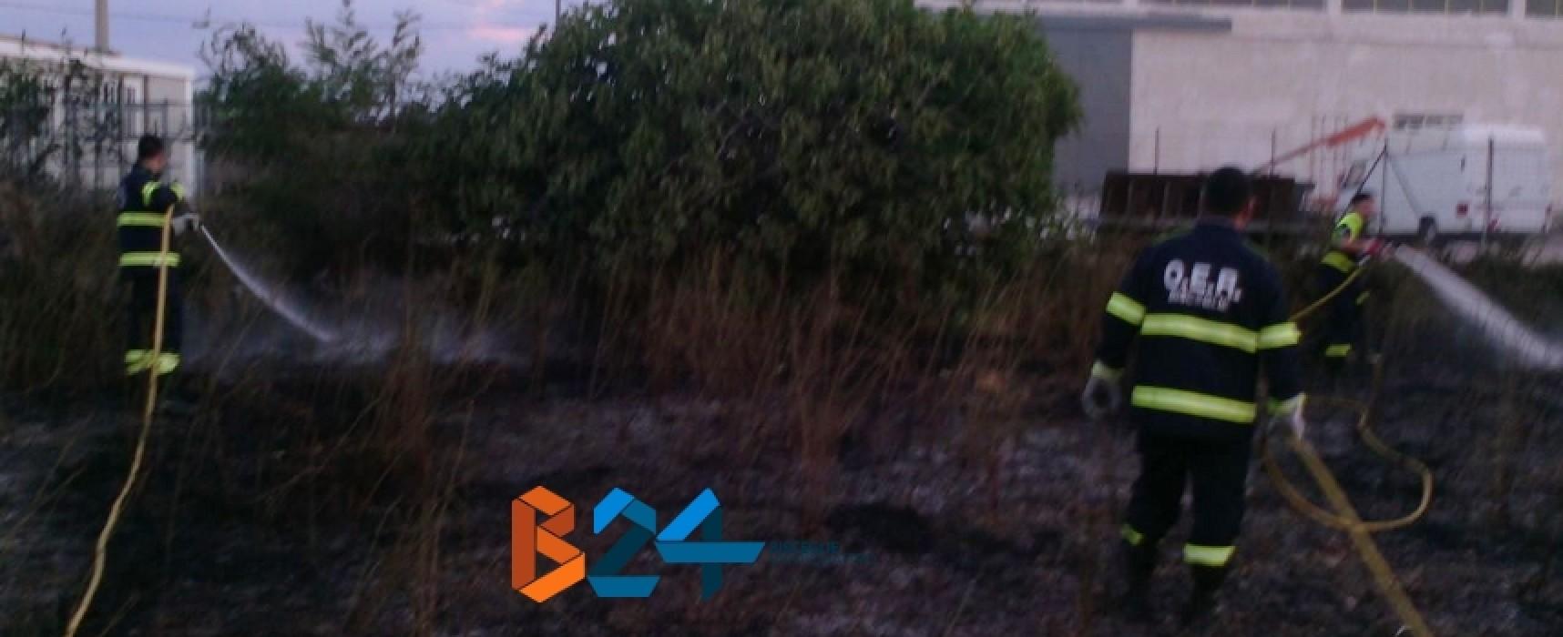 Incendio in zona Bimarmi nella serata di ieri
