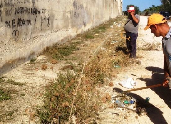 Effettuato ieri un intervento straordinario di bonifica della strada Cala Pantano