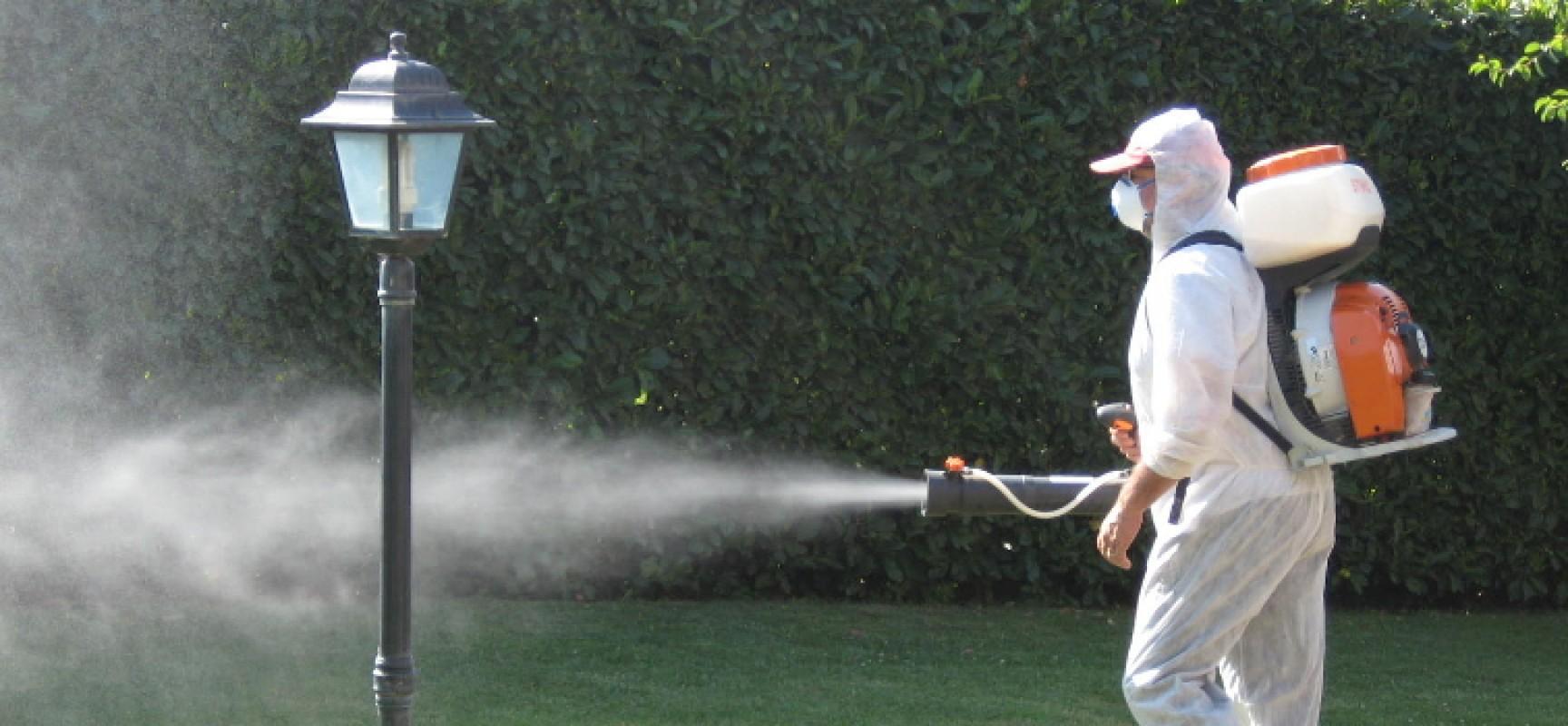 Disinfestazione contro mosche e zanzare, tenere ben chiuse porte e finestre / DETTAGLI