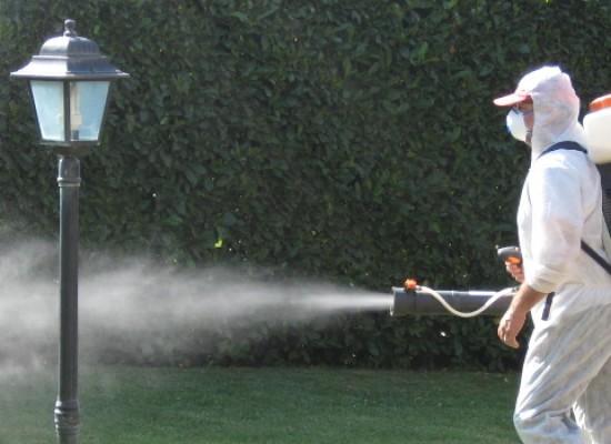 Interventi di disinfestazione contro mosche e zanzare / DETTAGLI