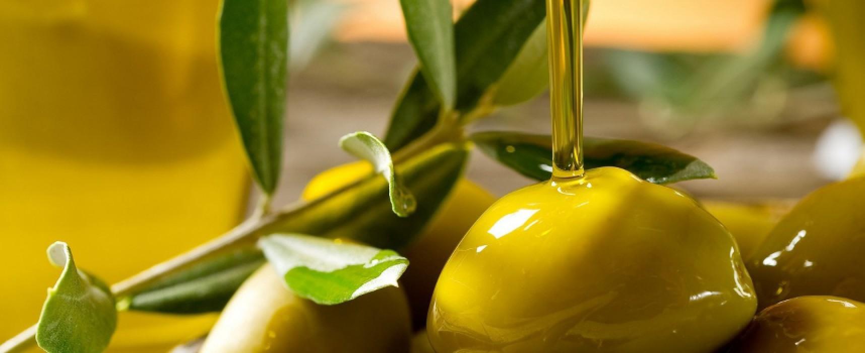 """L'olio d'oliva protagonista del mercato """"Dalla Terra al Mare"""" domani alla Centrale Ortofrutticola"""