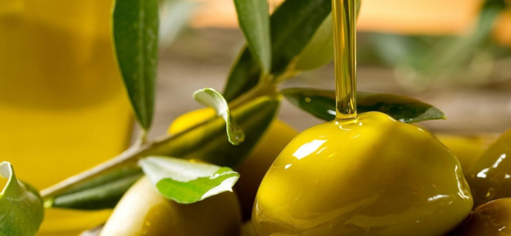 Sì del Parlamento europeo ad altre 35mila tonnellate di olio tunisino senza dazi
