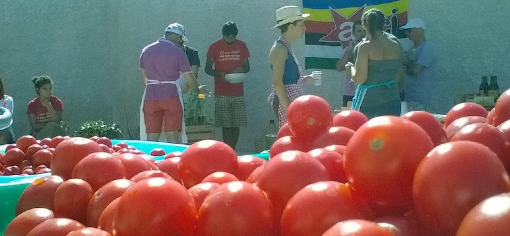 """Torna domani la """"salsa sociale"""" targata Open Source. In serata live dei Kalifoo Ground Music System"""