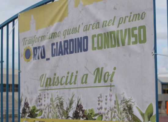 Orto condiviso: riscuote consensi nonostante la pioggia l'iniziativa verde di ZonaEffe / VIDEO