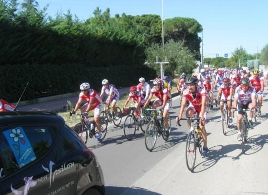 """Edizione numero 33 del Trofeo """"Festa del Lavoro"""" organizzato dai Cicloamatori Avis"""