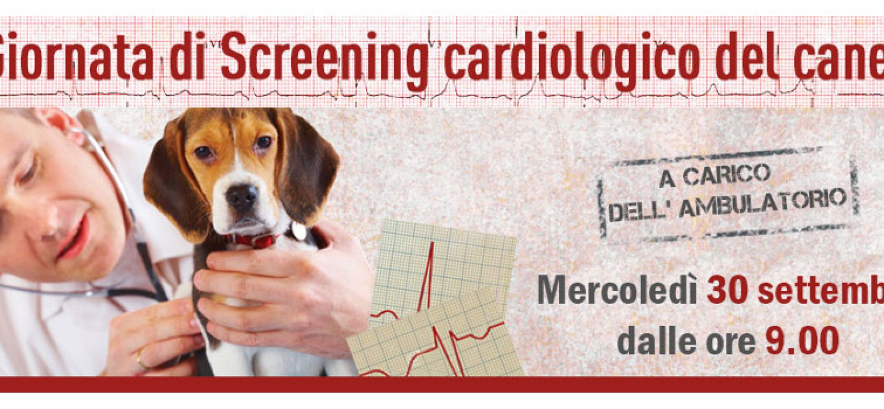 L'ambulatorio Papagni promuove a sue spese la giornata dello screening cardiologico del cane