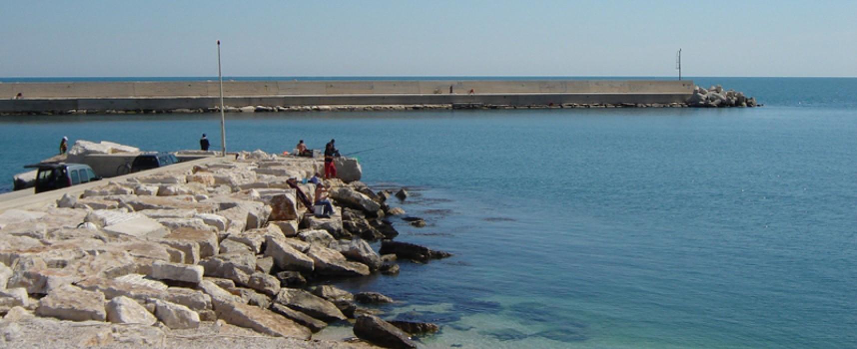 Raddoppio posti barca al porto, la giunta comunale approva studio di fattibilità