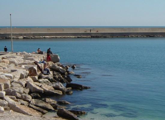Ritrovato biscegliese 75enne dato per disperso in mare