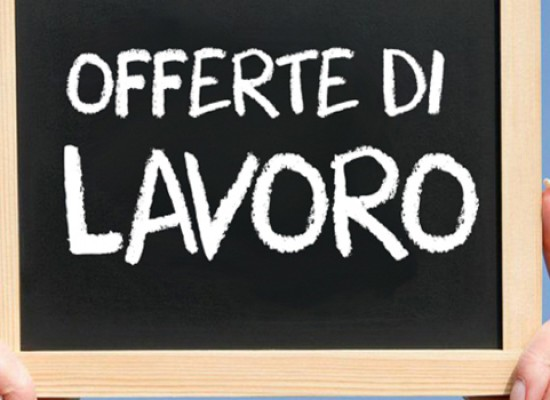 Ragioniere/a, agente commerciale e network marketing. Opportunità di lavoro a Bisceglie