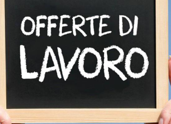 Contabili, pizzaioli, antennisti, banconisti e altre offerte di lavoro a Bisceglie / DETTAGLI
