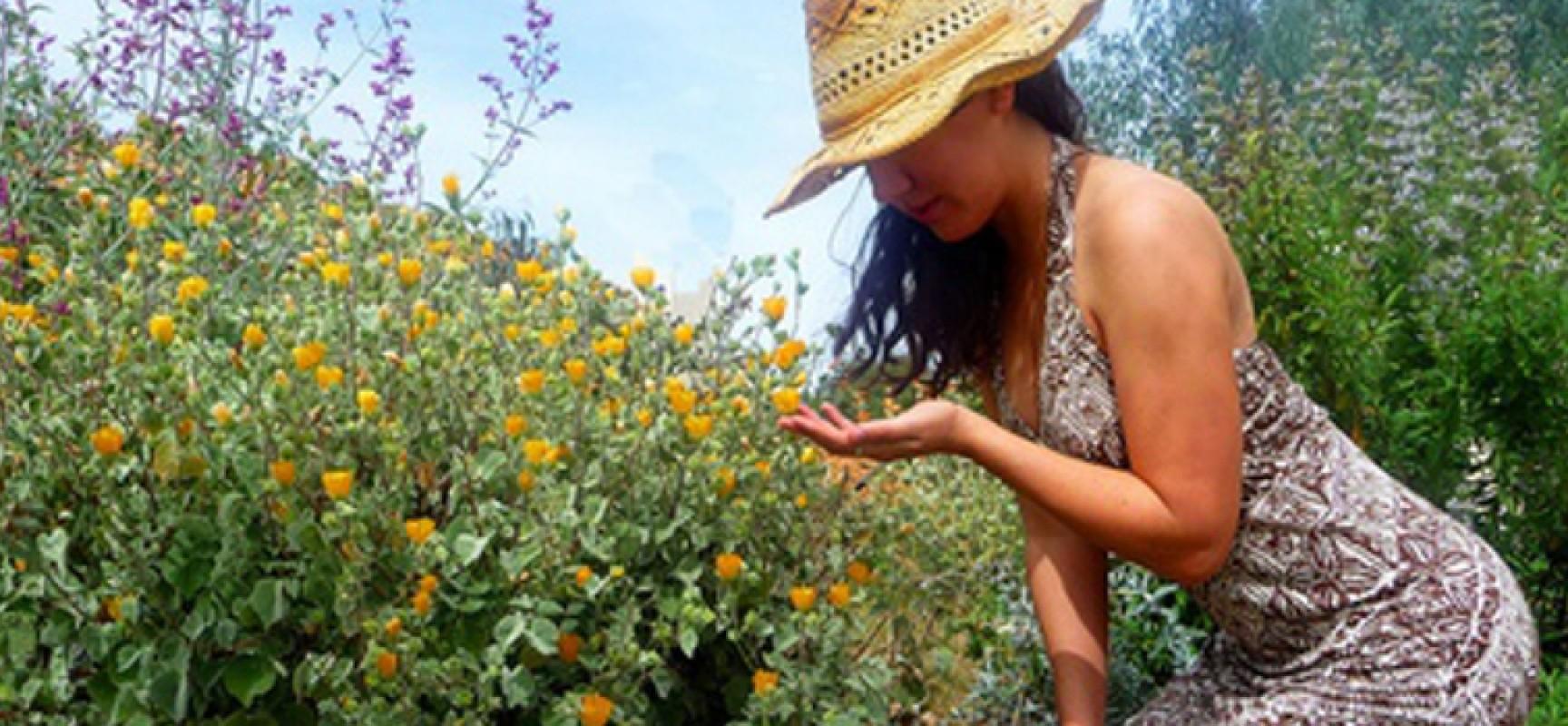 Ortoterapia: curare le piante è come curare sé stessi / a cura della dott.ssa Renata Rana