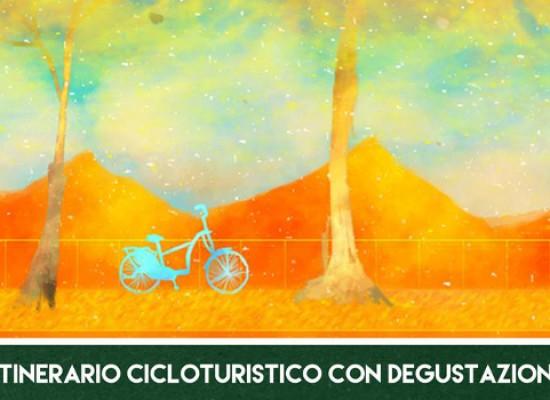 Raggi d'autunno: domenica 25 Biciliae organizza escursione e degustazione nella campagna biscegliese