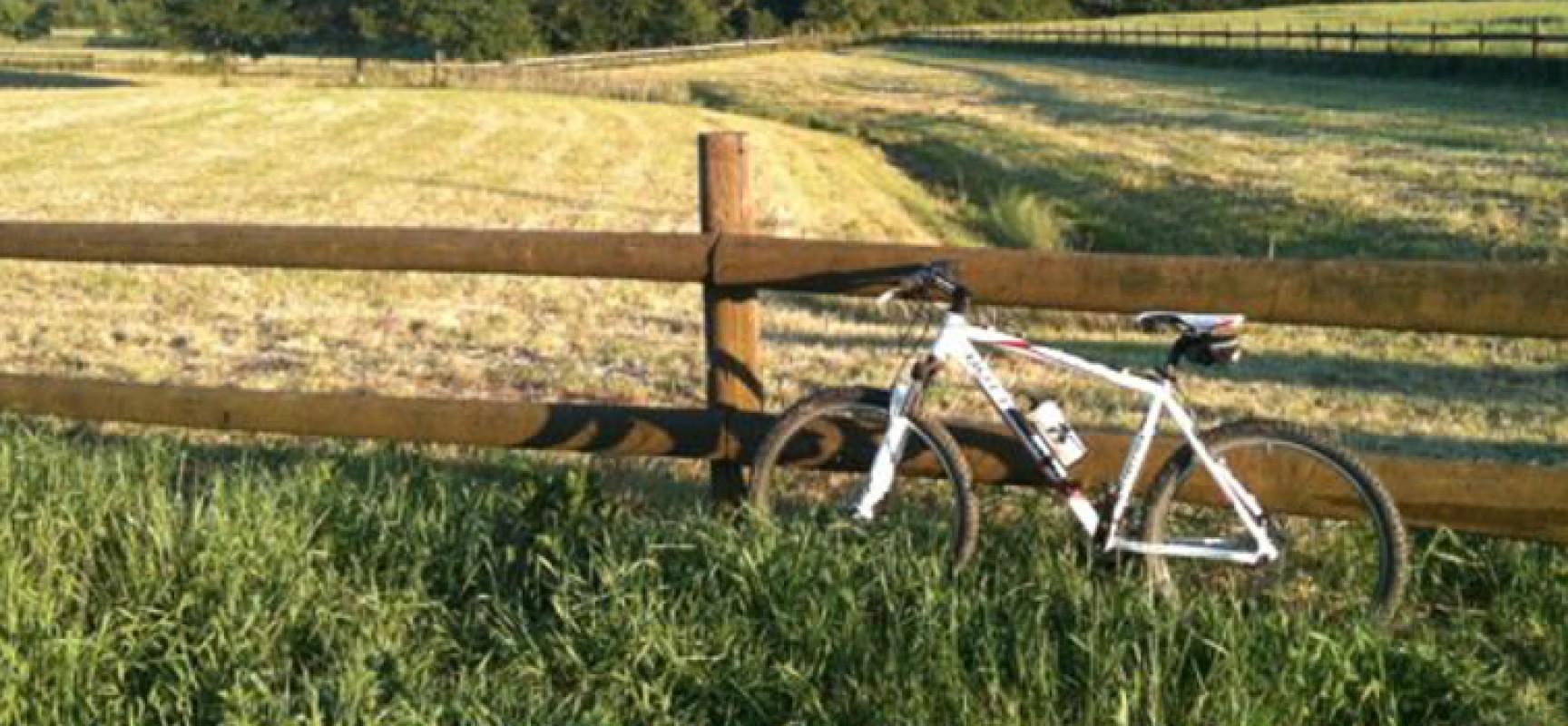 Cicloescursione a cura di Biciliæ in occasione della settimana della mobilità sostenibile