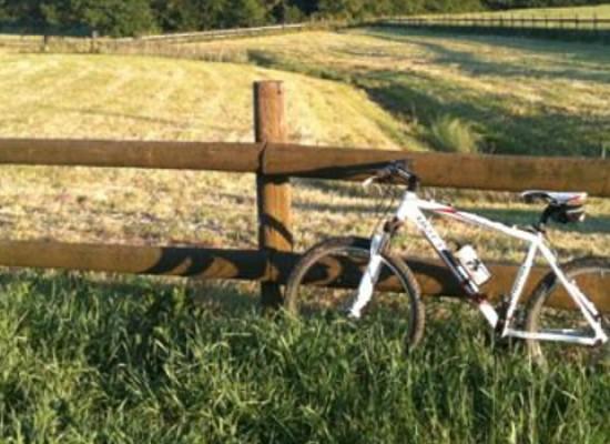 """""""Biciclette, olio e fantasia"""", itinerario cicloturistico organizzato da Biciliae"""