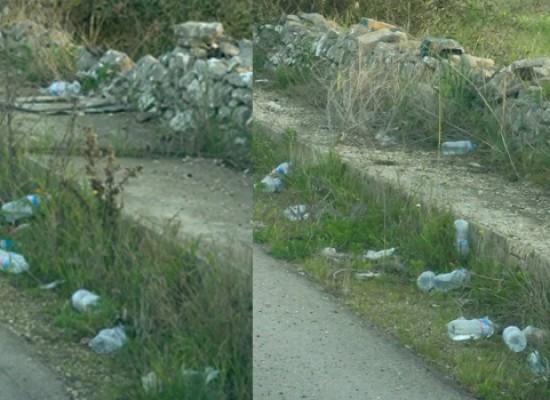 """Post Maratona delle cattedrali, Lac: """"Tappeto di bottiglie in strada, cattivo costume"""""""