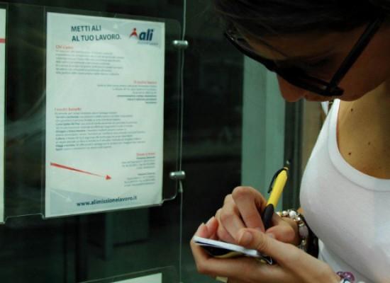 Animazione turistica e autotrasporti, opportunità di lavoro a Bisceglie
