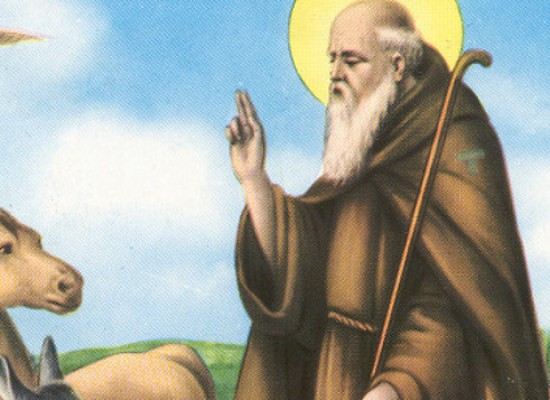Bisceglie festeggia Sant'Antonio Abate con due eventi, previste limitazioni al traffico / PROGRAMMI