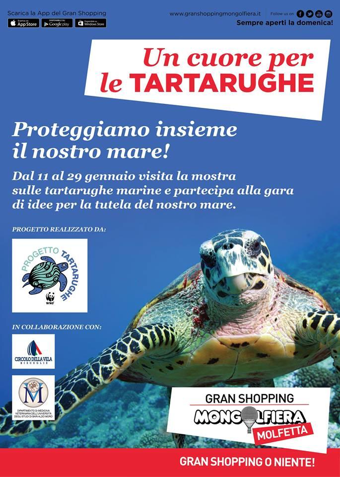 Un cuore per le tartarughe c anche il circolo della for Tutto per le tartarughe