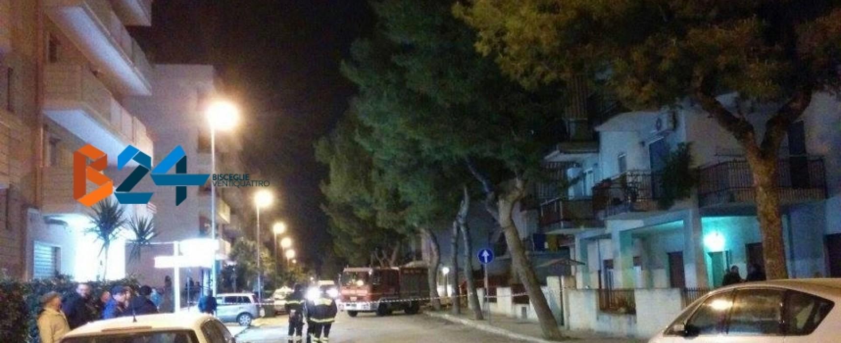 Grosso pino pericolante isolato in via Sacerdote di Leo, tratto interdetto al traffico