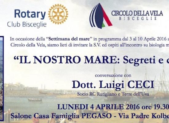 """Agenda Rotary Club aprile 2016, si comincia oggi con l'incontro """"Il nostro mare"""""""
