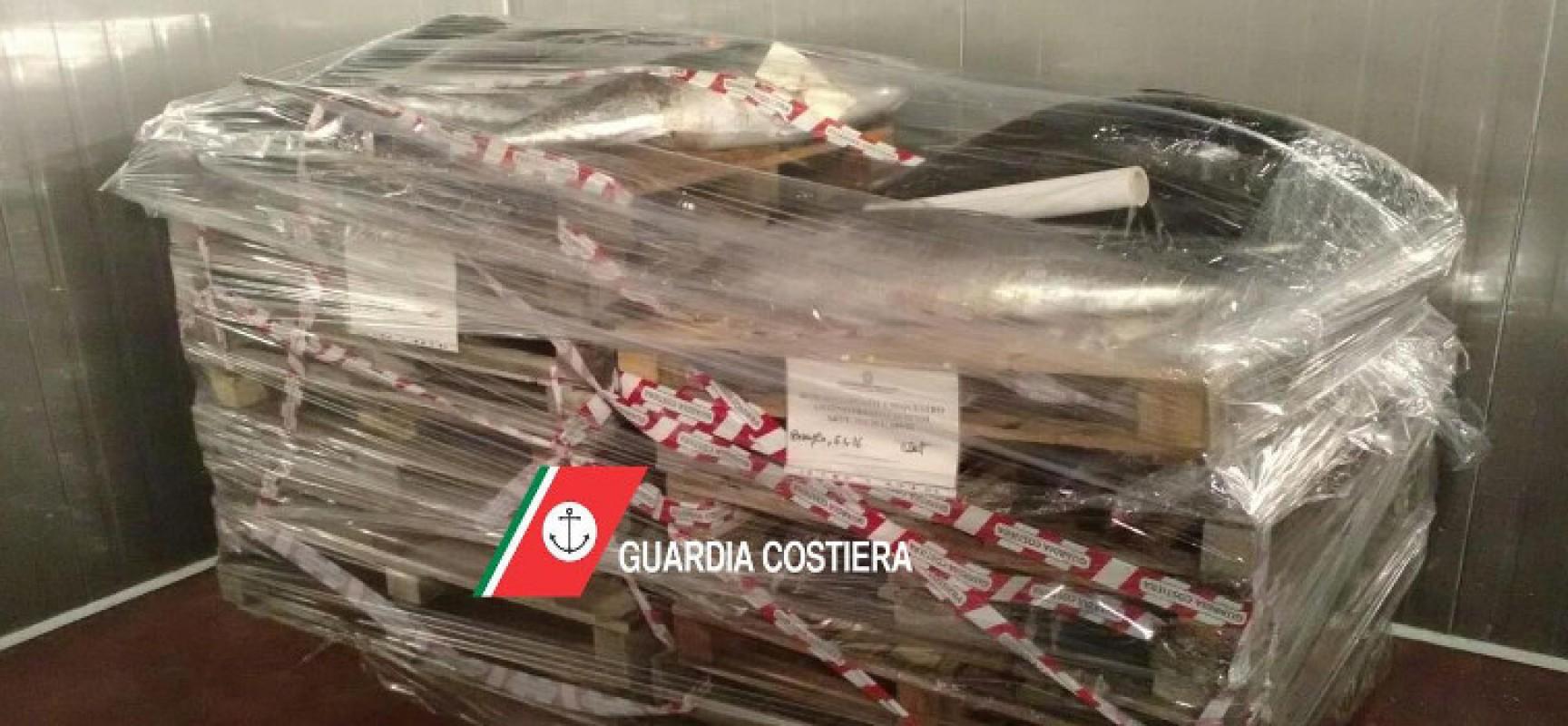 La Guardia Costiera sequestra una tonnellata di tonno rosso a un ingrosso ittico biscegliese