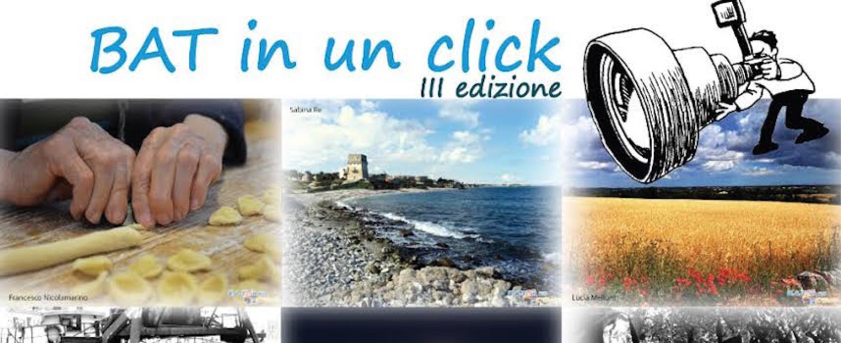"""Ancora pochi giorni per poter partecipare al concorso fotografico """"Bat in un click"""" della Pro Loco"""