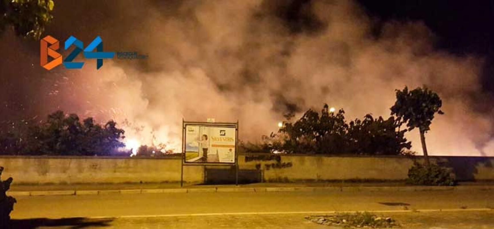 Incendio in un terreno nel quartiere Sant'Andrea, a fuoco sterpaglie e alberi / FOTO