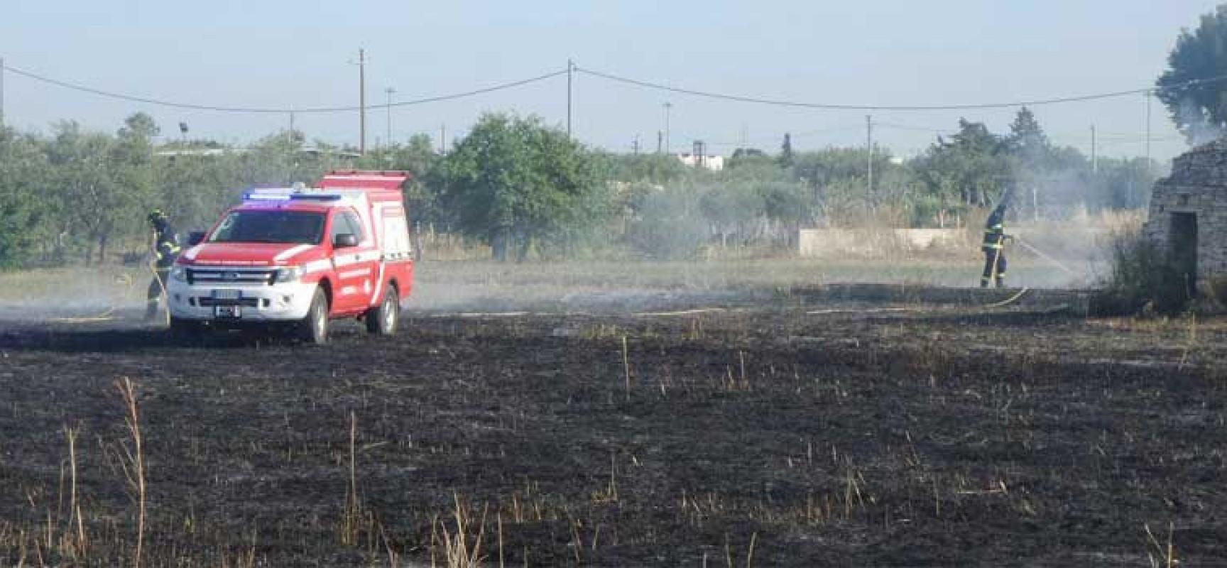 Incendio in un terreno incolto di via vecchia Corato, intervenuti Oer e Polizia municipale