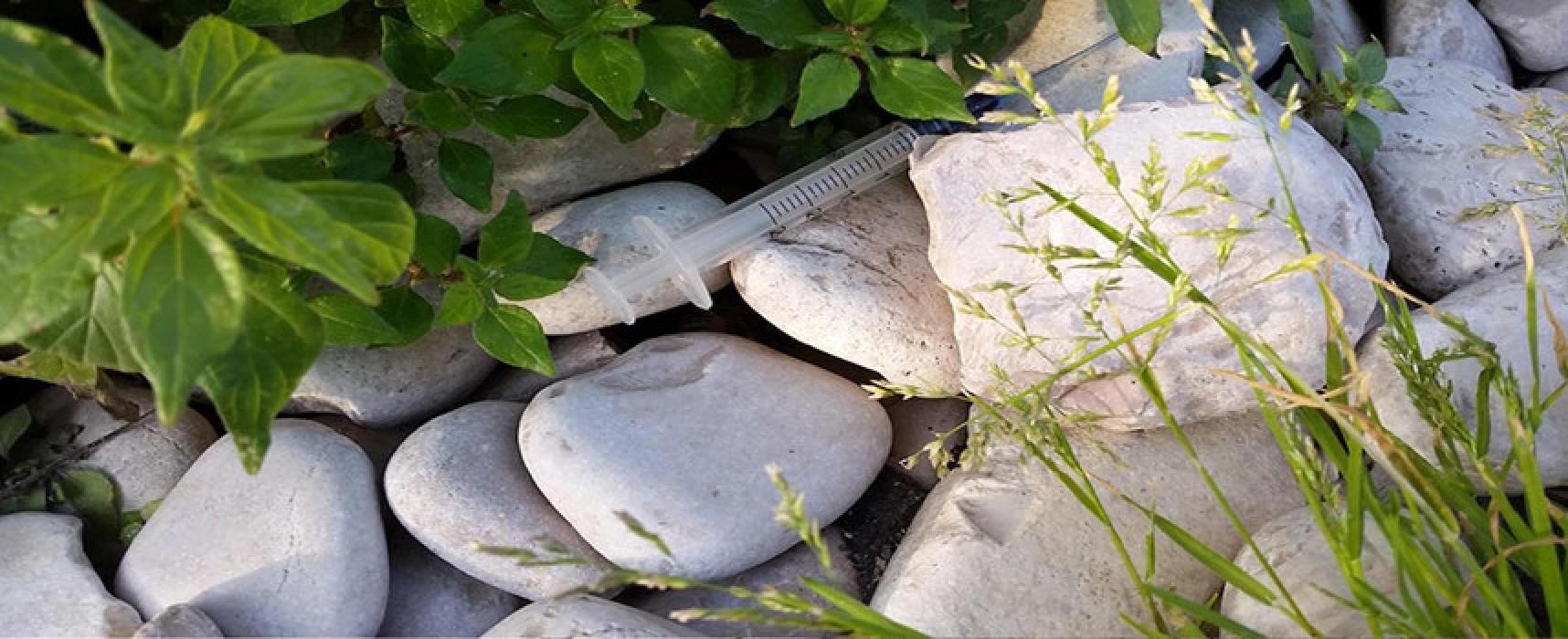 """Meetup """"Bisceglie 5 Stelle"""" presenta un'istanza per le spiagge: """"In stato pietoso, grave abbandono"""""""