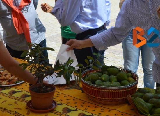 """""""Festa del Fiorone"""" tra riscoperta del territorio e succulente genuinità locali / FOTO"""