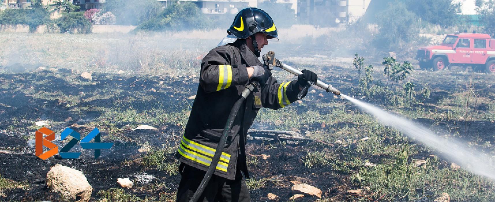 Rischio incendi, ordinanza sindacale un mese dopo l'avvio dello stato di grave pericolosità