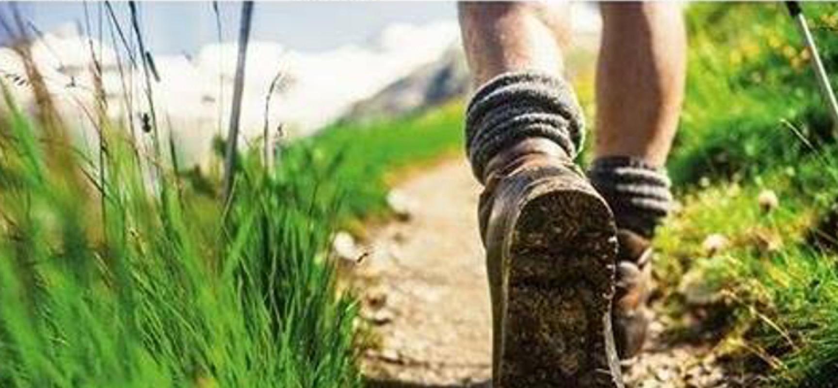 """""""In cammino verso l'agro"""", domenica escursione alla scoperta delle grotte di Ripalta"""