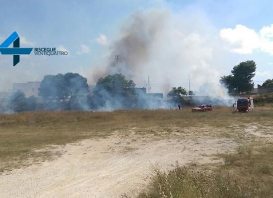 Incendio in zona san Martino insidia binari ferroviari / FOTO
