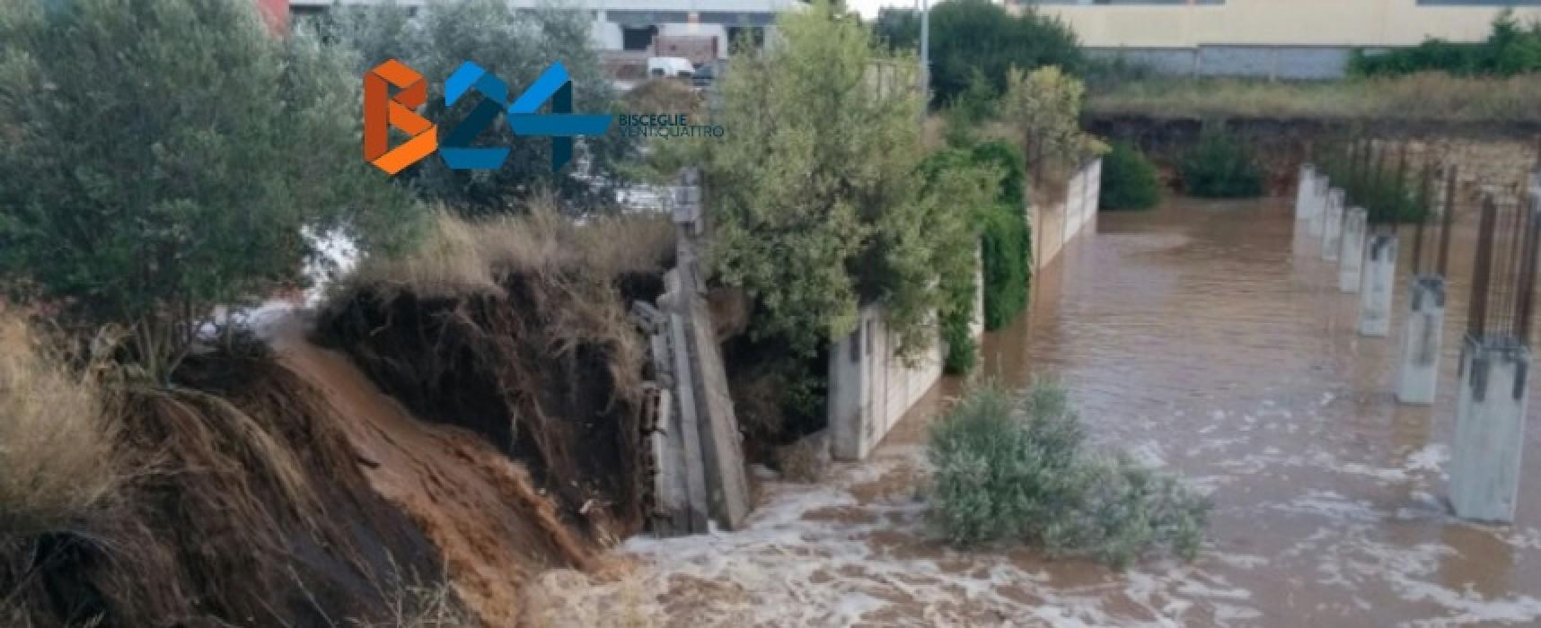 Danni maltempo, approvata in Regione la mozione Pd per lo stato di calamità