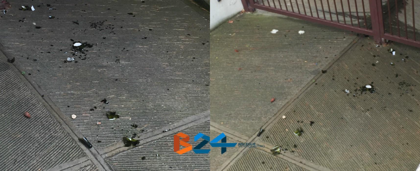 Vandalismo luna park via San Martino, la lettera di un biscegliese residente a Milano