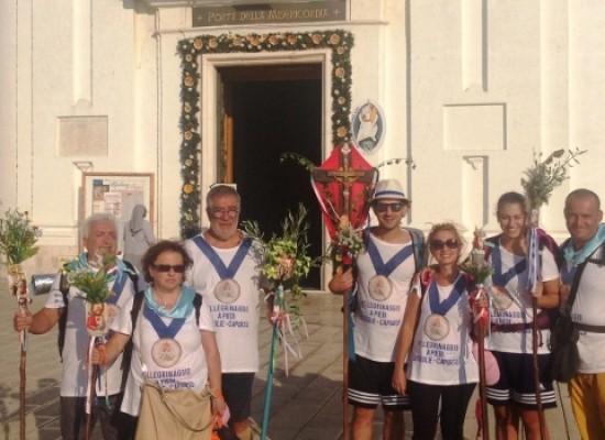 Nove pellegrini biscegliesi raggiungono a piedi Capurso per la Madonna del Pozzo / FOTO