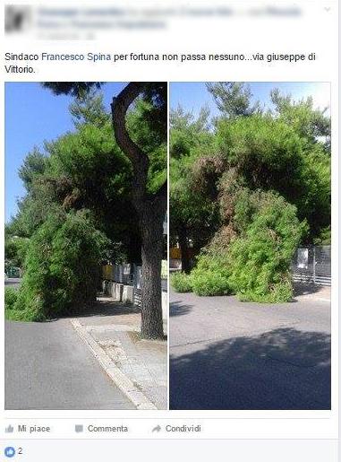 screen facebook ramo