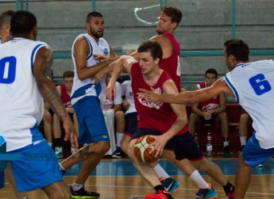 Lions Basket, sconfitta indolore nella prima amichevole stagionale con l'Udas Cerignola