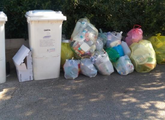 Igiene urbana, Camassambiente deposita esposto alla Procura della Repubblica di Trani