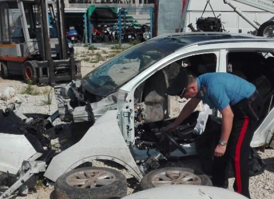 Auto rubate in un fondo agricolo, operazione dei Carabinieri di Bisceglie / VIDEO
