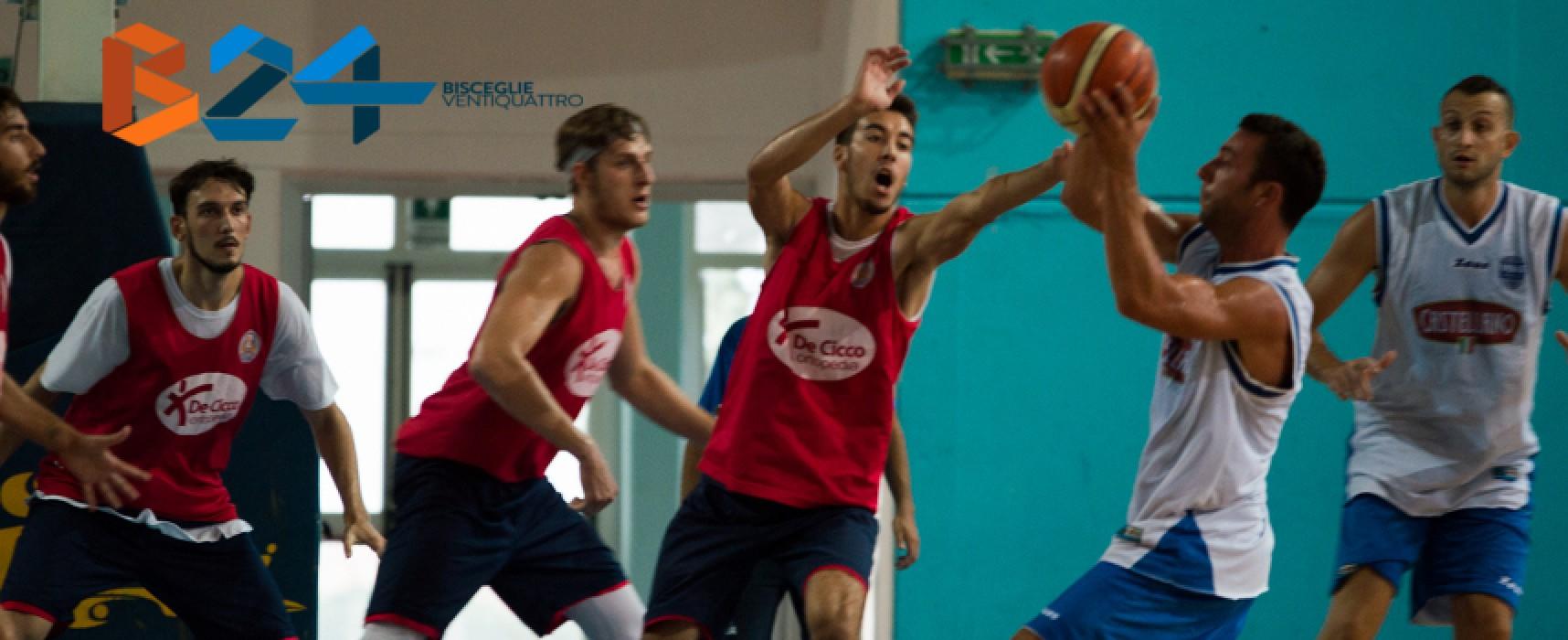 Lions Basket, questo pomeriggio ultima amichevole precampionato al Paladolmen